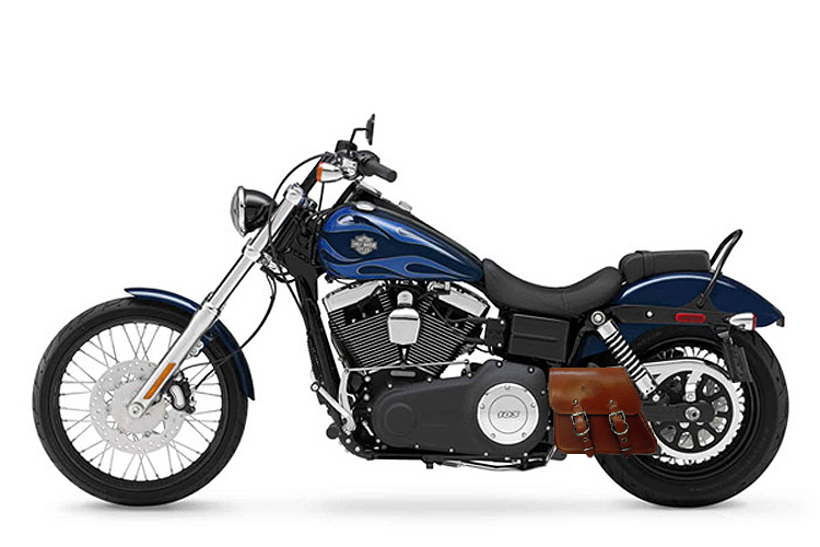 Hd Gringo on 2006 Harley Davidson Softail Wiring Diagram